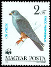 Cl: Red-footed Falcon (Falco vespertinus) <<K&eacute;k v&eacute;rcse>> (Repeat for this country)  SG 3510 (1983) 50