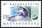 Cl: Great Egret (Ardea alba)(Repeat for this country)  SG 4304 (1996) 30
