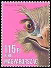 Cl: Greater Rhea (Rhea americana)(Out of range) (I do not have this stamp)  new (2016)