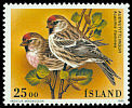 Cl: Common Redpoll (Carduelis flammea) <<Audnutittlingur>>  SG 848 (1995) 75