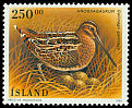 Cl: Common Snipe (Gallinago gallinago) <<Hrossagaukur>>  SG 849 (1995) 725
