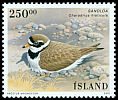 Cl: Common Ringed Plover (Charadrius hiaticula) <<Sandloa>>  SG 1010 (2001) 600