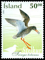 Cl: Common Redshank (Tringa totanus) <<Stelkur>>  SG 1036 (2002) 110