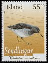 Cl: Purple Sandpiper (Calidris maritima) <<Sendlingur>>  SG 1092 (2004) 150 [3/30]