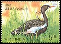 Cl: Lesser Florican (Sypheotides indica)(Endemic or near-endemic)  SG 2349 (2006)  [5/41]