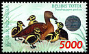 Cl: Spotted Whistling-Duck (Dendrocygna guttata) <<Belibis Totol>>  SG 2445 (1998)