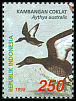 Cl: White-eyed Duck (Aythya australis) <<Kambangan Coklat>>  SG 2468 (1998)