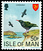 Cl: Red-billed Chough (Pyrrhocorax pyrrhocorax) SG 126 (1978) 100