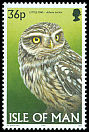 Cl: Little Owl (Athene noctua) SG 737 (1997)
