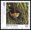 Cl: Winter Wren (Troglodytes troglodytes)(Repeat for this country)  SG 1293 (2006)