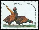 Cl: Ring-necked Pheasant (Phasianus colchicus)(Repeat for this country)  SG 2814 (1994) 65