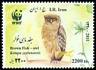Cl: Brown Fish-Owl (Ketupa zeylonensis) new (2011)  [7/41]