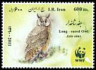 Cl: Northern Long-eared Owl (Asio otus) new (2011)  [7/41]