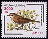Cl: Greater Whitethroat (Sylvia communis) SG 3000 (2001)  [1/16]
