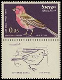 Cl: Pale Rosefinch (Carpodacus synoicus)(Repeat for this country)  SG 244 (1963) 10