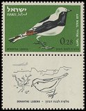 Cl: Mourning Wheatear (Oenanthe lugens)(Repeat for this country)  SG 246 (1963) 15