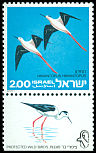 Cl: Black-winged Stilt (Himantopus himantopus) SG 616 (1975) 50