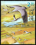 Cl: Common Crane (Grus grus) SG 1620 (2002)