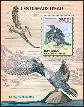 Cl: Great Cormorant (Phalacrocorax carbo)(I do not have this stamp)  new (2014)