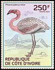Cl: Lesser Flamingo (Phoenicopterus minor)(I do not have this stamp)  new (2014)