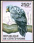 Cl: African Harrier-Hawk (Polyboroides typus) new (2014)  [9/8]