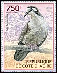 Cl: Tambourine Dove (Turtur tympanistria)(I do not have this stamp)  new (2014)