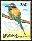 Cl: White-throated Bee-eater (Merops albicollis) new (2014)  [9/9]