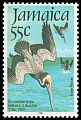 Cl: Brown Pelican (Pelecanus occidentalis) SG 621 (1985) 125