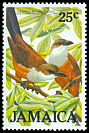 Cl: Chestnut-bellied Cuckoo (Hyetornis pluvialis) SG 642 (1986) 0