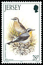 Cl: Northern Wheatear (Oenanthe oenanthe) SG 637 (1993)