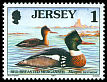Cl: Red-breasted Merganser (Mergus serrator) SG 774 (1997) 10