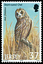Cl: Short-eared Owl (Asio flammeus) SG 1001 (2001)