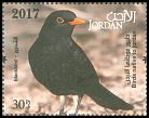 Cl: Eurasian Blackbird (Turdus merula)(Repeat for this country)  new (2017)