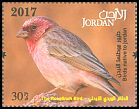 Cl: Pale Rosefinch (Carpodacus synoicus)(Repeat for this country)  new (2017)