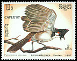 Cl: Red-whiskered Bulbul (Pycnonotus jocosus) SG 828 (1987) 130