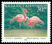 Cl: Greater Flamingo (Phoenicopterus roseus)(Repeat for this country)  SG 232 (1998) 140 [5/42]