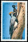 Cl: White-bellied Woodpecker (Dryocopus javensis)(Repeat for this country)  SG 1781 (1978) 250