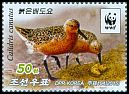 Cl: Red Knot (Calidris canutus)(Repeat for this country)  new (2015)
