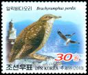 Cl: East Siberian Gull (Larus vegae)(Repeat for this country)  SG 4918 (2010)