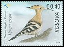 Cl: Eurasian Hoopoe (Upupa epops) new (2018)  [11/40]