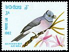 Cl: Black-naped Monarch (Hypothymis azurea) SG 542 (1982) 65