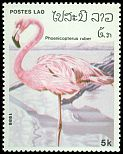 Cl: Caribbean Flamingo (Phoenicopterus ruber)(Out of range)  SG 903 (1986) 125