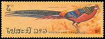 Cl: Golden Pheasant (Chrysolophus pictus)(Out of range)  SG 913 (1986) 110