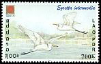 Cl: Intermediate Egret (Egretta intermedia) SG 1756 (2001)