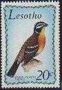 Cl: Golden-breasted Bunting (Emberiza flaviventris) SG 209 (1971) 425 [3/45]
