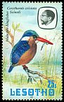 Cl: Malachite Kingfisher (Alcedo cristata) <<Seinoli>>  SG 507 (1981) 80