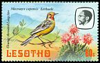Cl: Orange-throated Longclaw (Macronyx capensis) <<Lethoele>>  SG 509 (1981) 125