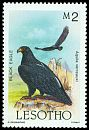 Cl: Verreaux's Eagle (Aquila verreauxii) SG 685 (1985) 210