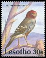 Cl: Red-headed Finch (Amadina erythrocephala)(Repeat for this country)  SG 1066 (1992)