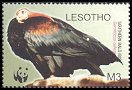 Cl: Bald Ibis (Geronticus calvus)(Endemic or near-endemic)  SG 1935 (2004)  [2/31]